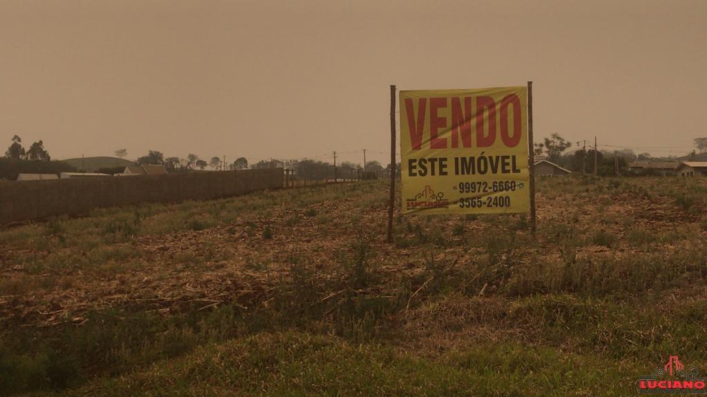 Terreno à venda - Saída para São Jorge Em São Miguel do Iguaçu | LUCIANO CORRETOR DE IMÓVEIS | Portal OBusca