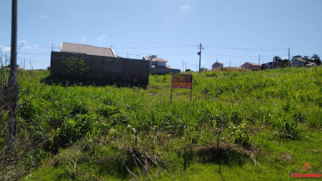 Terreno à venda - Loteamento Carradore Em São Miguel do Iguaçu | LUCIANO CORRETOR DE IMÓVEIS | Portal OBusca