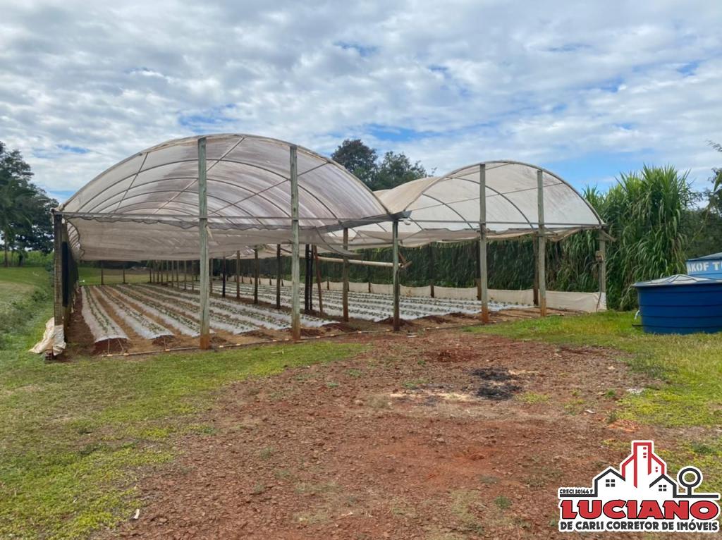 Propriedade à venda - Serranópolis do Iguaçu | LUCIANO CORRETOR DE IMÓVEIS | Portal OBusca